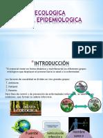 Equipo 1 Proceso Salud-Enfermedad,Triada Ecológica y Cadena Infecciosa 2019