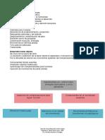 Apuntes clase DMA.pdf