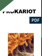 4. PROKARIOT Rev1
