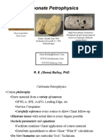 Carbonate Petrophysics OverView