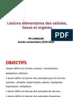 pathologie cellulaire et tissulaire- lésions élémentaires 2019FMP.pdf