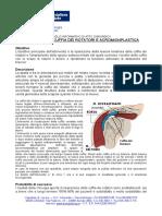 spalla rip cuffia.PDF