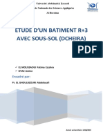 rapport dcheira.pdf