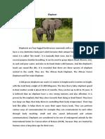 Elephant report teks