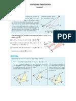 guia homotecia.pdf