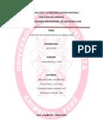 monografia-oficial-biosiesel oficial terminada 2.docx