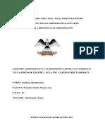 Auditoria a ONG Camino Verde (1)