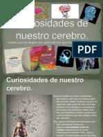 Curiosidades cerebrales
