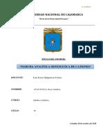 Marcha Analitica Sistematica de Cationes.. Unc (1)