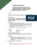 TERMINOS DE REFERENCIA.docx
