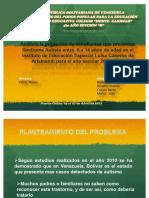 57030424-Presentacion-proyecto-autismo.pdf
