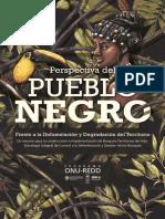 VISIÓN PUEBLO AFRO.pdf