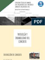 Durabilidad y Patologias Del Hormigon AD(1)
