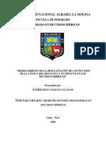 calizaya-llatasi-elmer-elio.pdf