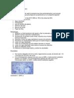 Diagnostico-Tuberculosis