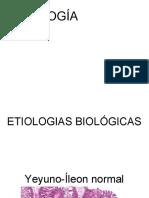 PATOLOGIA.pdf