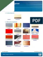 Lackfehler diag .. ppg_de_diagnose_pdf