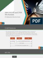 imsenumanddnsmechanism-140808022535-phpapp01.pptx