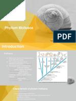 Mollusc.pptx