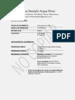 curriculum profesional Mirko Araya .docx