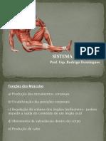 Aula_1_Sistema_Muscular_e_Articular.pdf