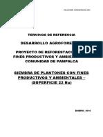 Terminos de Referencia - Siembra de Plantones con Fines Productivos y Am...