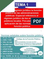 TEMA 1 Regimen juridico prevalencia normas.ppt