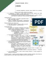 Farmaco P2 resumos Jose Paulo Amoedo.pdf