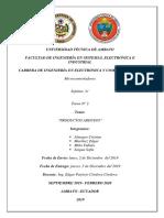 Consulta N2__Almagro_Martinez_Miño_saigua.docx