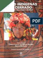 Processos_Educacionais_na_Terra_Indigena.pdf