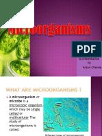 MICROORGANISMS Arjun Chawla VIIID.pptx