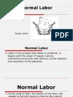 labor.pptx