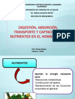 transporte, absorcion y almacenamento.pptx