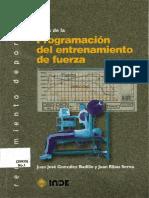 BASES D LA PROGRAMACION DL ENTTO D FUERZA.pdf