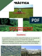 PRACTICa AGROECOSISTEMA (1)