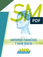 Enfermeria en Salud Mental y Psiquiatria AMIR