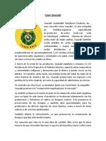 Caso Guayakí_GNES_Clase4_CreeME_2019.pdf