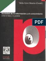 312486475 Sociedad de La Informacion