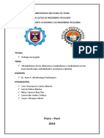 METABOLISMO DE LOS ALIMENTOS.docx