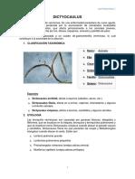DICTYUCAULUS.docx