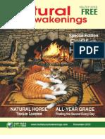 Natural Awakenings December 2010