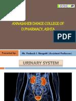10-Urinary system