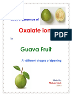 Chemistry investigatory project  presence of oxalate ions in guava at different stages of ripening
