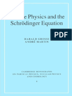 Particle Physics and the Schrödinger Equation (Cambridge Monographs on Particle Physics, Nuclear Physics and Cosmology 6) ( PDFDrive.com )