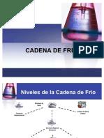 77579519-CADENA-DE-FRIO