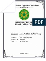 INTERNSHIP REPORT Plant Pathology.docx