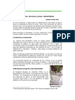 COSECHA  DE AGUAS LLUVIAS - MICROPRESAS
