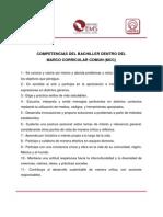 Anexo3_Competencias_bachiller