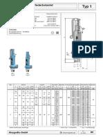 typ-001-db.pdf