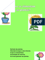 Alimentacao_plantas.ppt